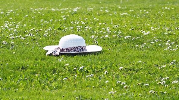 """Zurück nach Fetknoppen – Leena Parkkinen """"Die alte Dame, die ihren Hut nahm und untertauchte"""""""