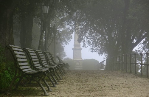 "Tod im Park – Friedrich Ani ""Der namenloseTag"""