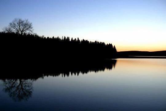 """Gemeinschaft am See – Jocelyne Saucier """"Ein Lebenmehr"""""""