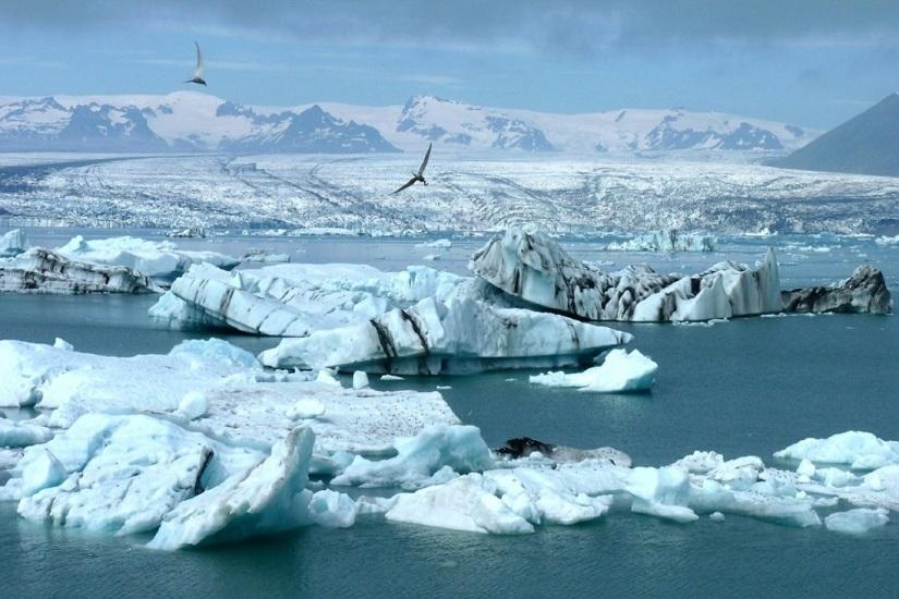 "Arthur Conan Doyle ""Heute dreimal ins Polarmeergefallen"""
