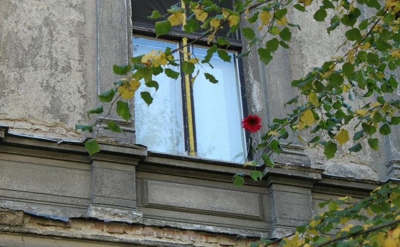 """Ein Jahrhundert – Holger Siemann """"Das Weiszheithaus"""""""