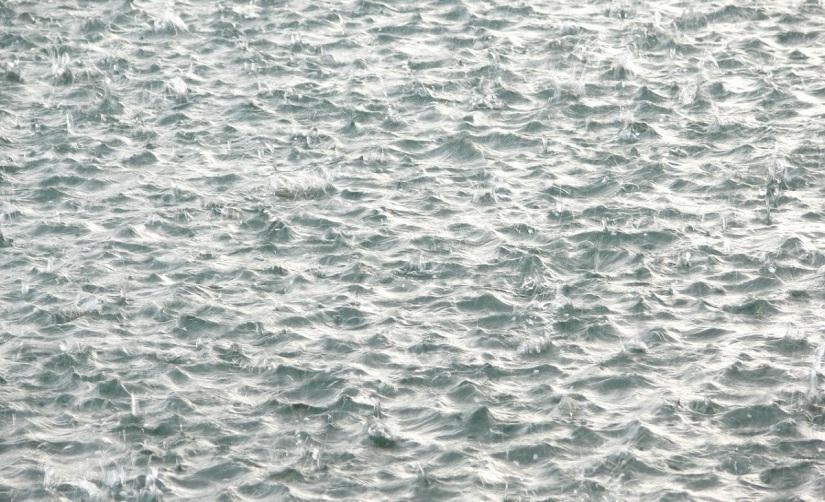 """Wunden – Franziska Hauser """"Die Gewitterschwimmerin"""""""