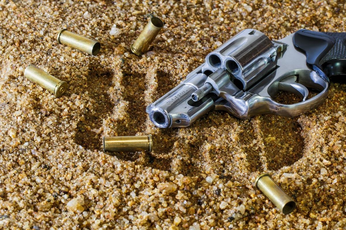 """Welt der Waffen - Jennifer Clement """"Gun Love"""""""