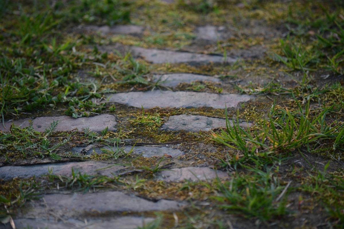 "Mathijs Deen ""Über alte Wege"""