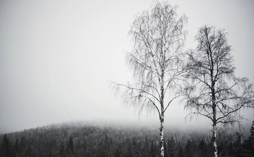 """Karin Smirnoff – """"MeinBruder"""""""